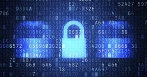 Seguridad de una plataforma web a medida en Netbrain